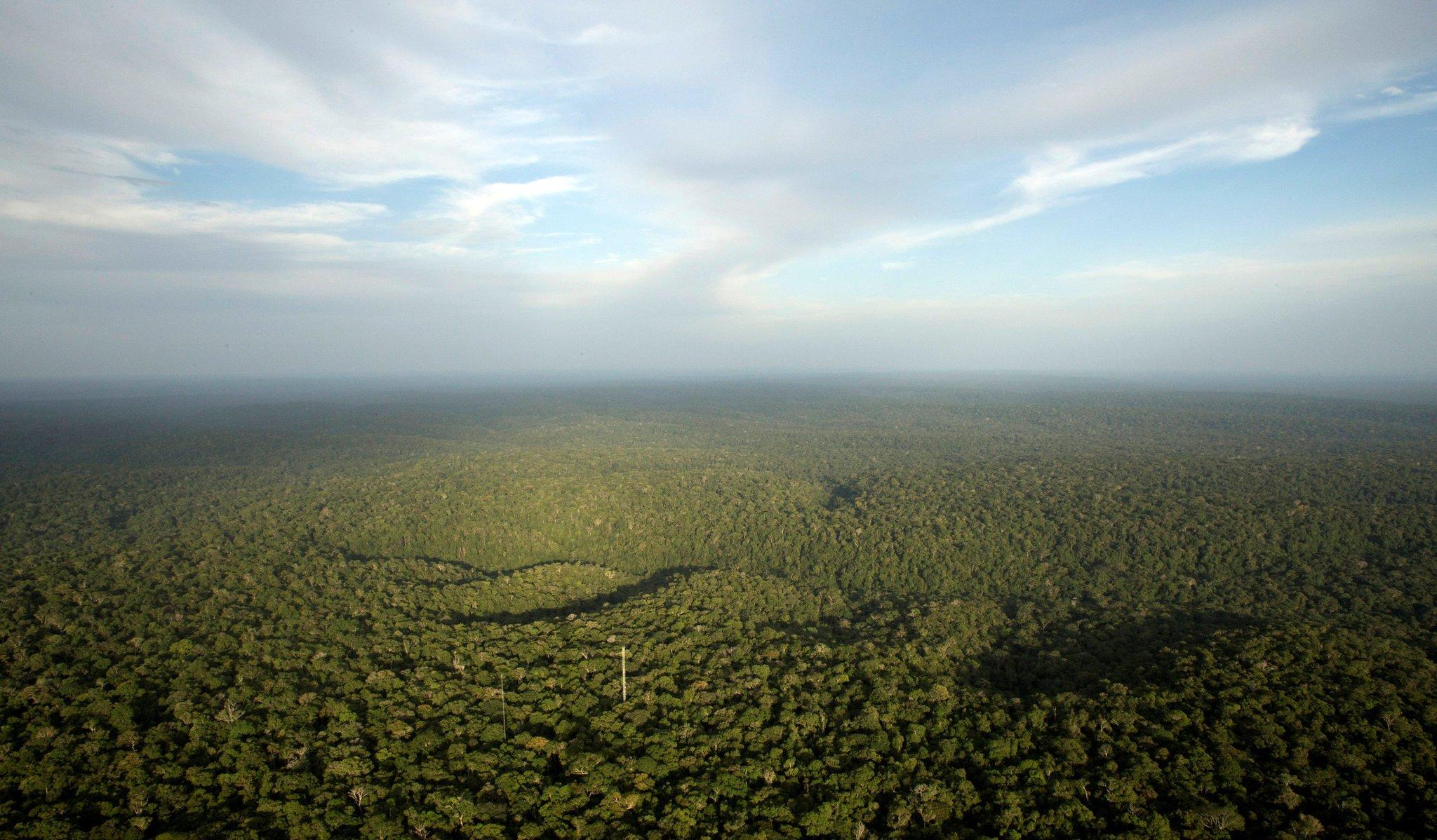 STF conclui julgamento de ações sobre novo Código Florestal