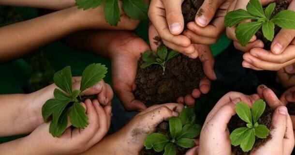 Comissão de Finanças da Câmara aprova destinação de 20% dos recursos de multas para educação ambiental