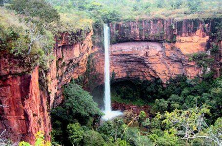 Bolsonaro defende plano de concessão de parques nacionais
