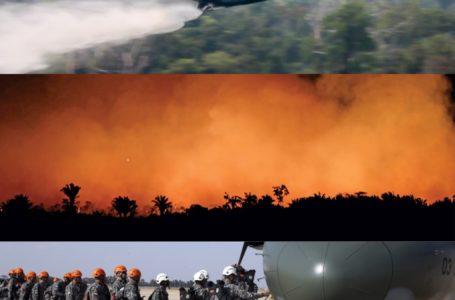 44 mil militares das Forças Armadas irão atuar na região da Amazônia