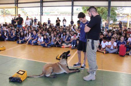 COMBATE ÀS DROGAS | Escolas públicas do DF participam da Semana de Prevenção ao Uso de Drogas