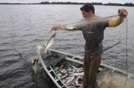 DESENVOLVIMENTO ECONÔMICO   Novo modelo de exploração econômica da Amazônia