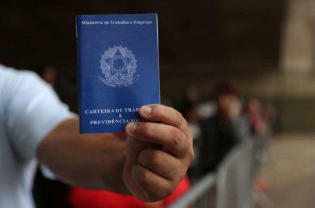 A TAXA CAIU | Desemprego cai para 11,6%