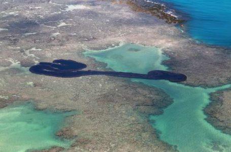ATÉ QUE ENFIM | PF aponta navio grego como suspeito de derramar óleo no litoral brasileiro
