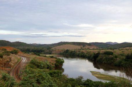 RECUPERANDO | Reflorestamento em Mariana usa mudas de pequenos agricultores
