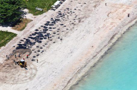 DESASTRE | Governo notifica empresa do barco suspeito de ter vazado óleo