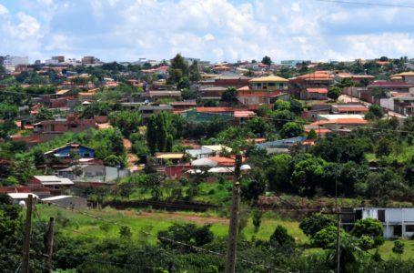 PLANO DE RECUPERAÇÃO   Arniqueira na luta contra a degradação ambiental