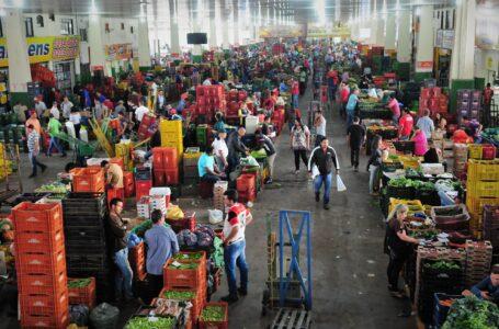 ESPECIAL GDF | Agricultura, o caminho para o crescimento