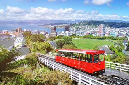 BOA NOTÍCIA | Nova Zelândia anuncia que erradicou coronavírus e suspende restrições