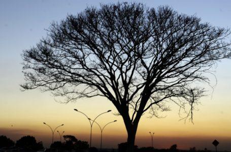 ATENÇÃO PARA O CLIMA | Umidade relativa do ar está caindo no DF