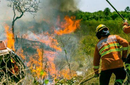 DF EM ALERTA | Bombeiros reforçam ações de prevenção aos incêndios florestais nesse período de seca