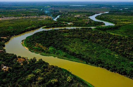 AÇÃO HUMANA   Perícia afirma que incêndio no Pantanal mato-grossense foi intencional