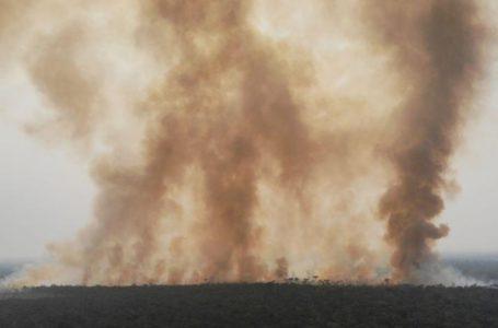 FUMAÇA CHEGA NO SUL E SUDESTE | Com queimadas intensas na Amazônia e no Pantanal