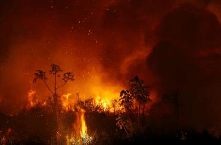 15 MIL FOCOS DE INCÊNDIO | Pantanal registra pior momento nos últimos dias
