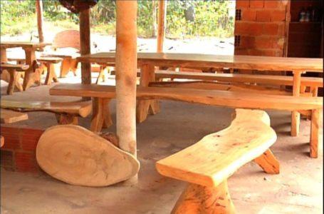SUSTENTABILIDADE   Projeto de Lei de Rafael Prudente vai permitir que madeira da poda de árvores do DF seja destinada para artesãos