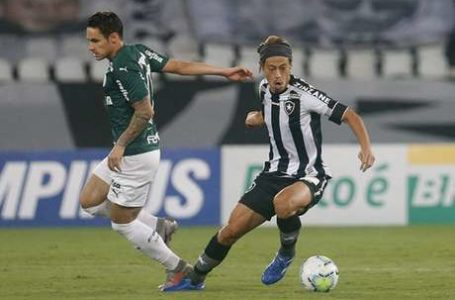 ENFIM, UMA VITÓRIA! | Botafogo quebra jejum contra Palmeiras e vence graças a Diego Cavalieri