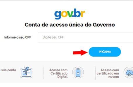 PORTAL GOV.BR | Mais de 60% dos brasileiros usam serviços públicos digitais