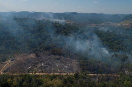 PROMESSA FALSA | Governo Bolsonaro faz cortes no orçamento do meio ambiente