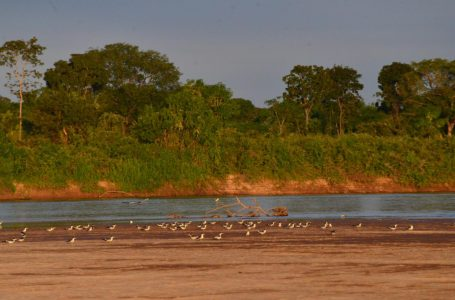PARA COMBATER A COVID | Governo de Goiás proíbe atividades de lazer e turismo no rio Araguaia durante férias do meio do ano