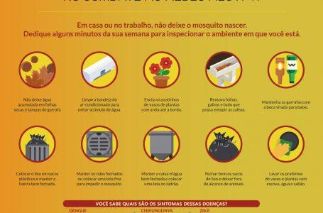 COMBATE AO MOSQUITO | Casos de Dengue continuam em queda no DF