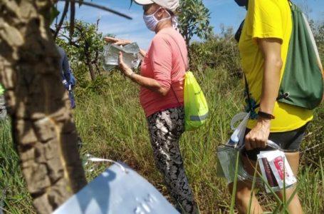 SEMANA DO CERRADO | Confira a programação das atividades educativas que serão desenvolvidas nas trilhas de todo o DF