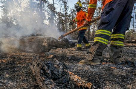 COMBATE ÀS QUEIMADAS | Órgãos federais e distritais se unem para enfrentar incêndios no DF